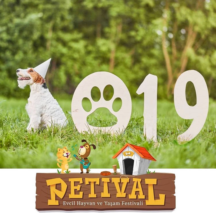 Petival 2019